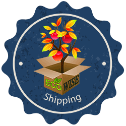 eco-wise shipping from Ty Ty Nursery